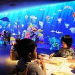 福岡県初開催!ホークスタウンモールにて、<br>『チームラボアイランド -学ぶ!未来の遊園地-』を開催。<br>「お絵かき水族館」など、9作品を展示。7月10日(金)~9月27日(日)まで。