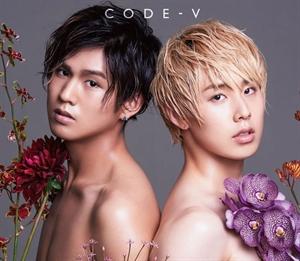 code-new1-1