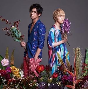 code-new3-1
