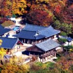 紅葉色付く韓国伝統山寺 鳳停寺