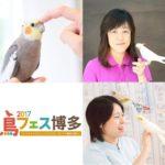 ことりカフェ主催「鳥フェス博多2017/愛鳥家セミナー」開催♪