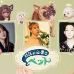 CNBLUE イ・ジョンシン、ユン・ウネがペットライフを大公開<br> 「対話が必要なペット」 3月10日 日本初放送決定!!